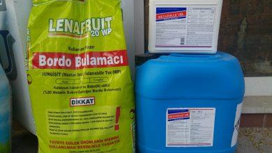 Photo of Koruma Metatolle Oil